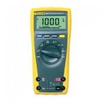 Мультиметр Fluke 175 EGFID